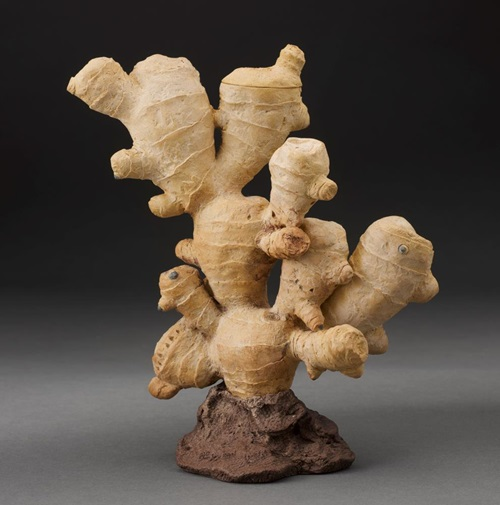 Ginger root-form teapot