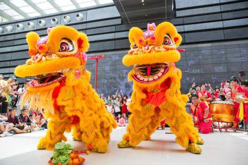 Lion Dance performance cny